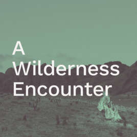 A Wilderness Encounter