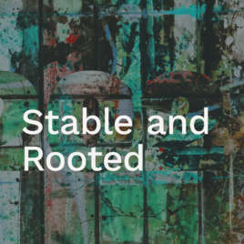 Stable and Rooted
