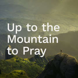 Up to the Mountain to Pray