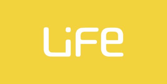Life Seminar 4