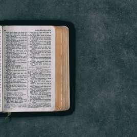 John 15:1-17